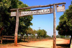 PAN – Transpantaneira portal